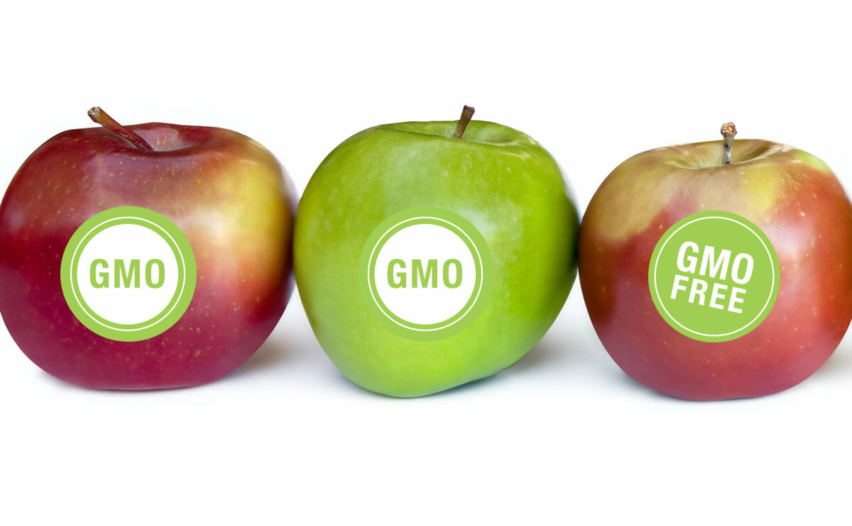 """labeling of genetically modified food products A issue in recent years has been foods made from genetically modified organisms (gmo), and the biggest controversy surrounding them is the labeling of them."
