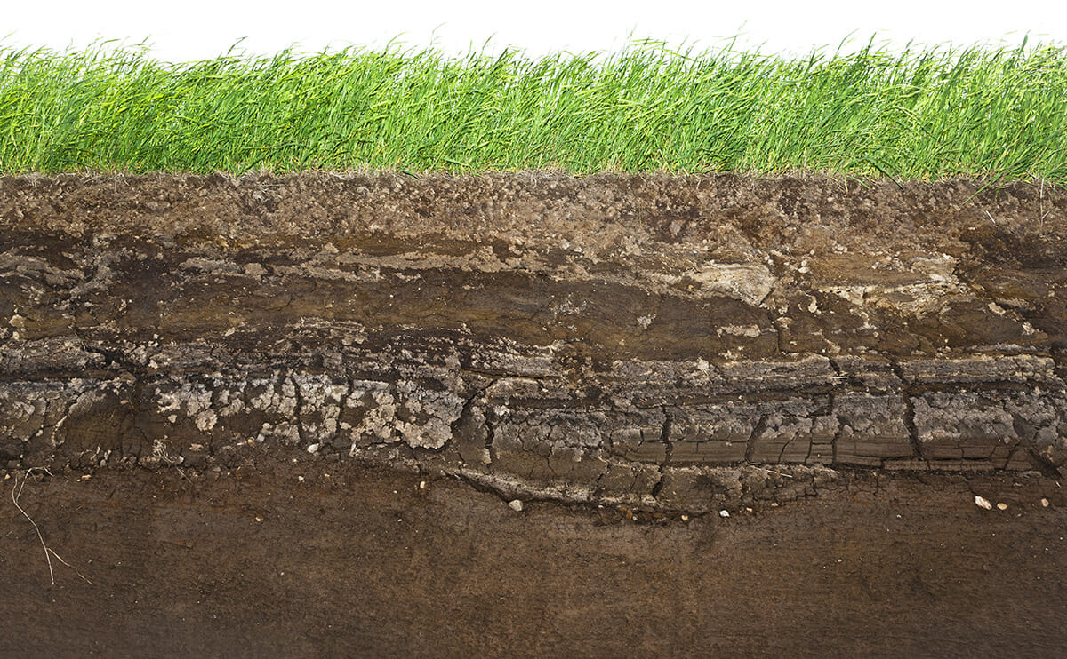 The surprisingly new science of soil modern farmer for Is soil living