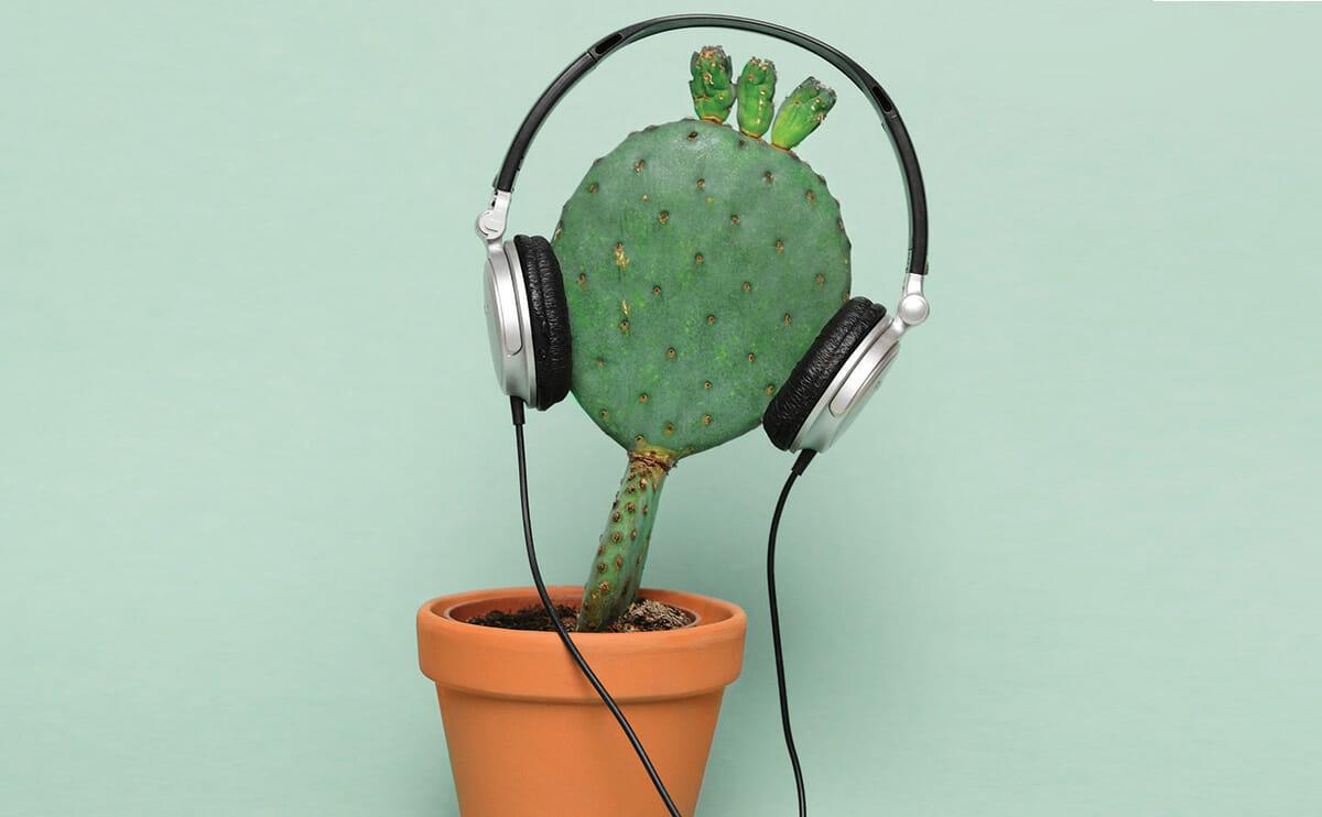 IMAGE(http://modernfarmer.com/wp-content/uploads/2013/05/plant-whisperer-hero.jpg)