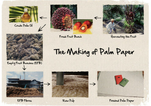 Palm oil waste paper