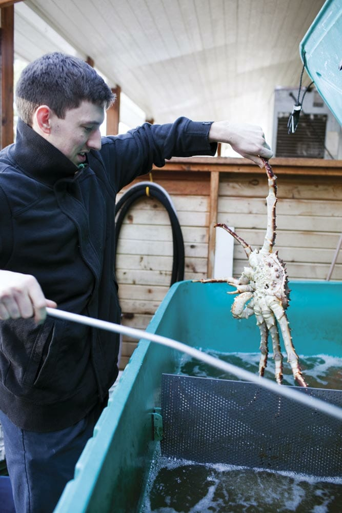 Rinsing off a (what else) local crab
