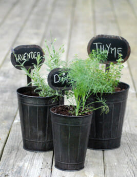 Rustic Planters with Chalkboard Tags
