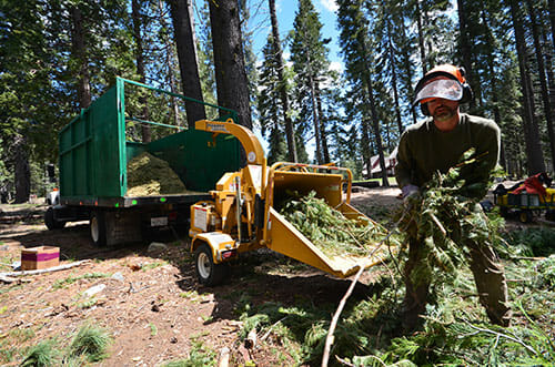 Hall Newbegin breaks out the heavy machinery as Juniper Ridge begins its harvest.