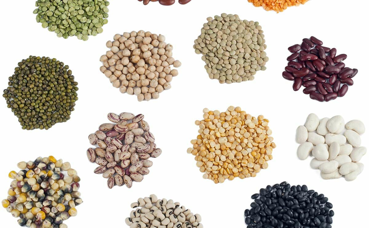 10 interesting facts about feminized cannabis seeds