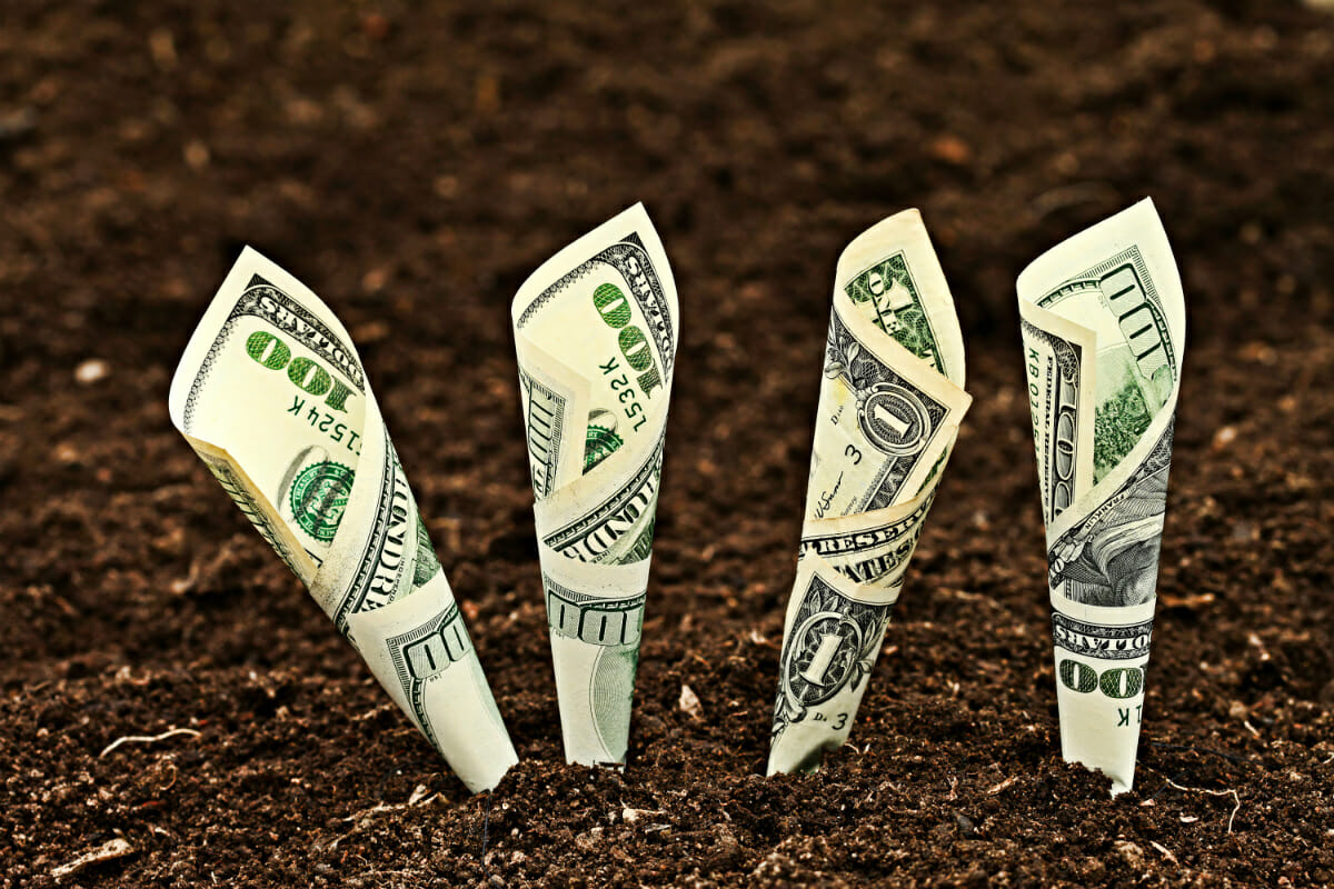 how to make money in agriculture