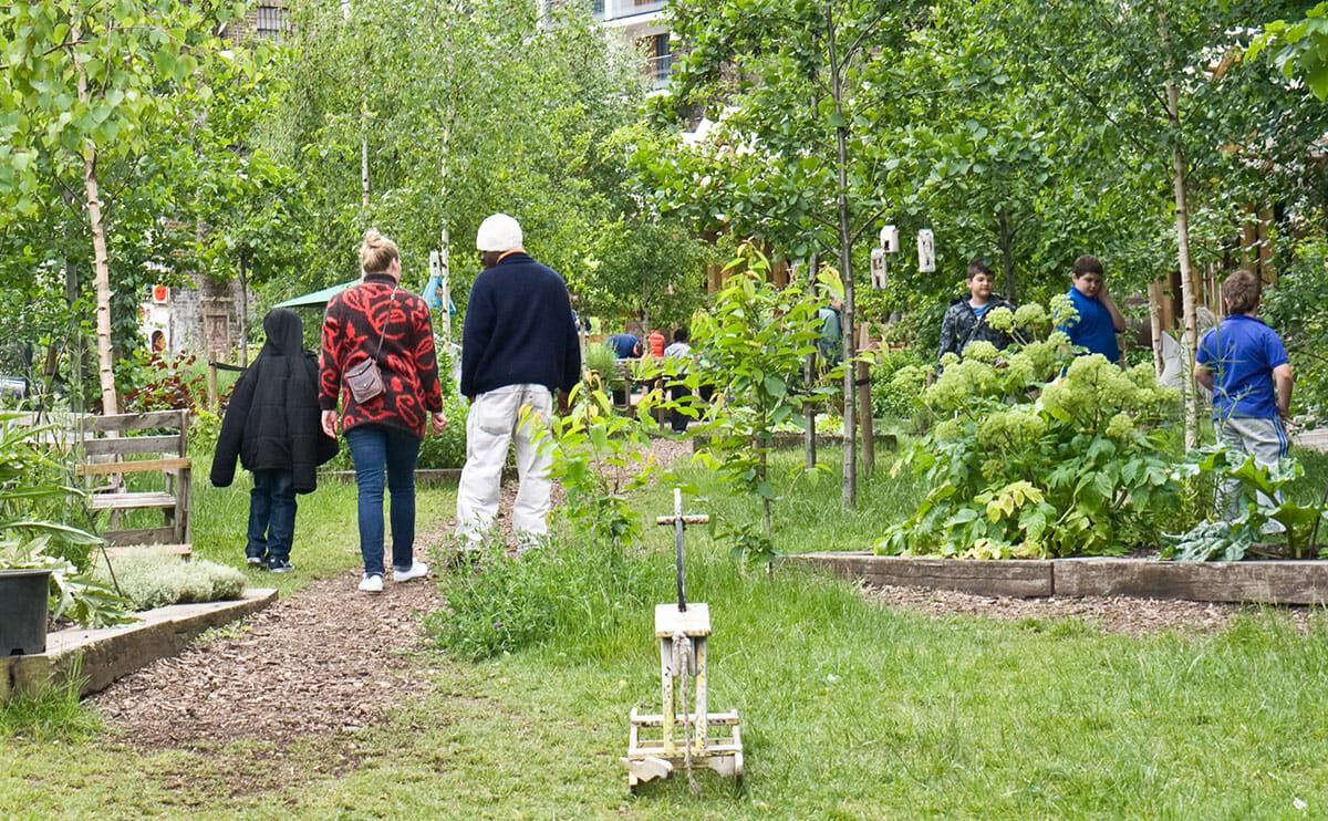 Dear Modern Farmer How Do I Start Up A Community Garden Modern Farmer