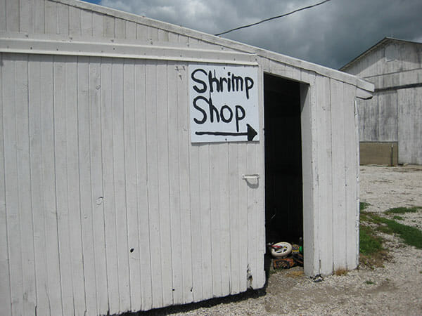 The sign leading the way to the shrimp tank.