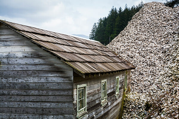 A storage shed is dwarfed by a pile of oyster shells.