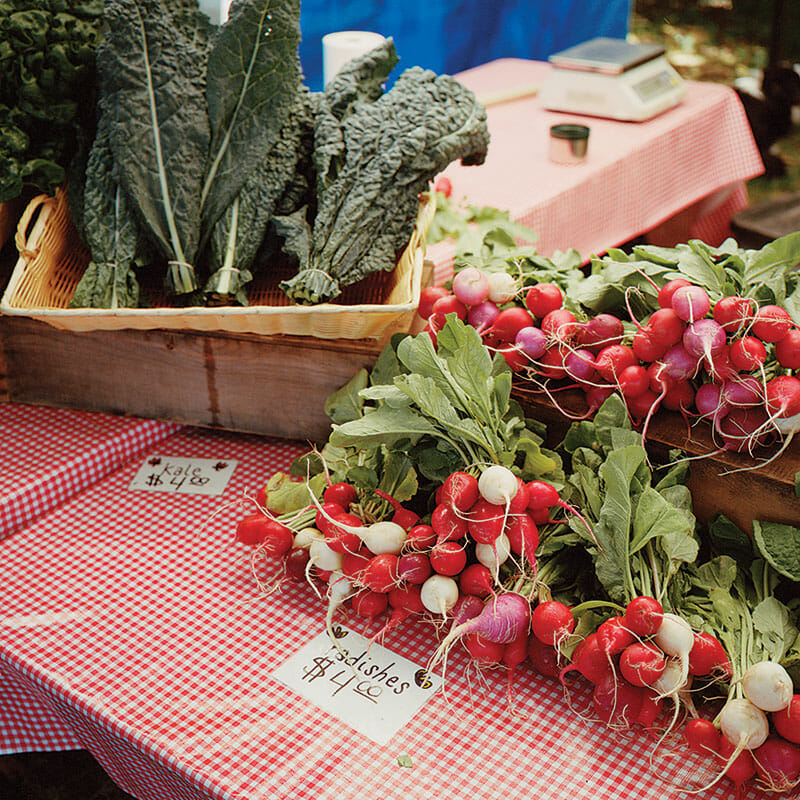 A sampling of goods at Traverse City's well-stocked farmers market, Second Spring Farm. (Photo credit: Second Spring Farm)