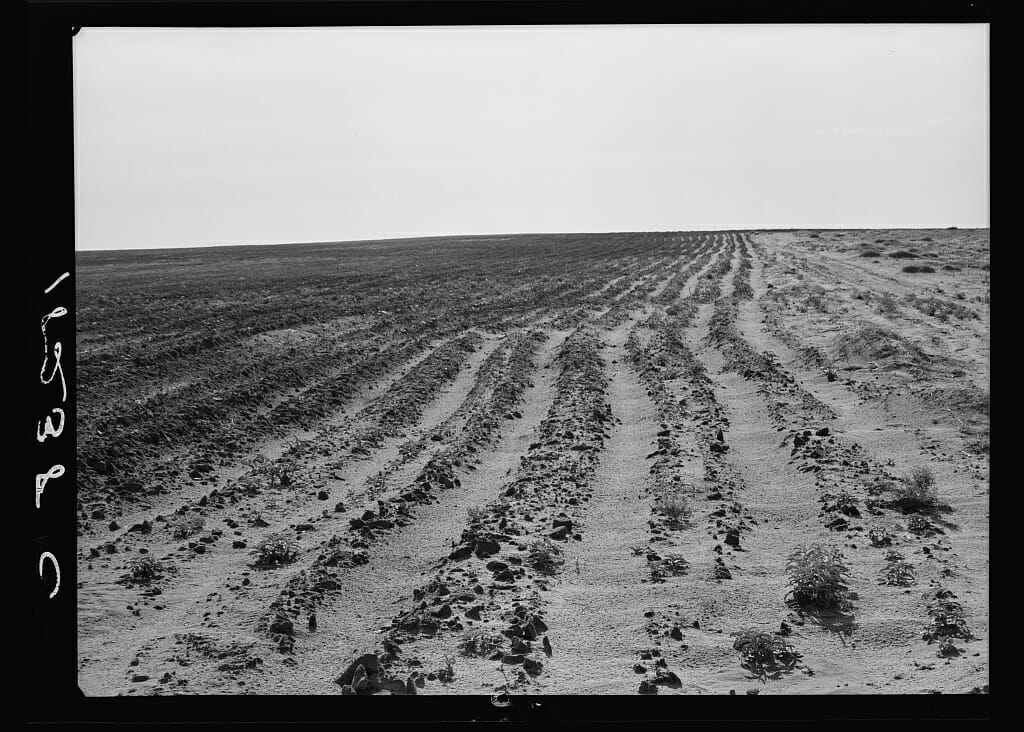 dust bowl By richard hornbeck the 1930s american dust bowl was an environmental  catastrophe that greatly eroded sections of the plains the dust bowl is estimated.
