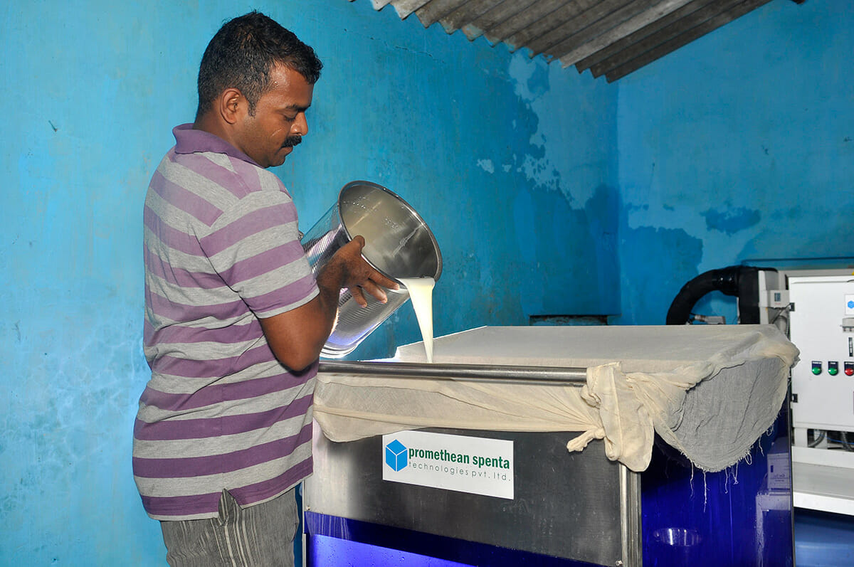 Chilling Milk Directly From The Cow For India S Dairy