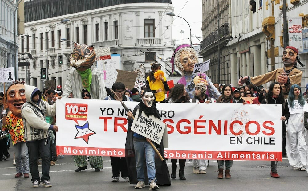 It's not just the U.S. that protests Monsanto: here is a scene from a May 2013 event in Chile, where the company was planning on introducing a new herbicide-resistant crop called Xtend.