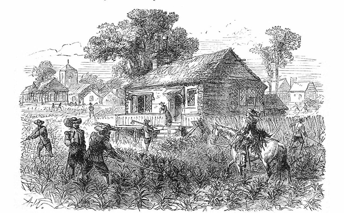 America's First Cash Crop: Tobacco - Modern Farmer