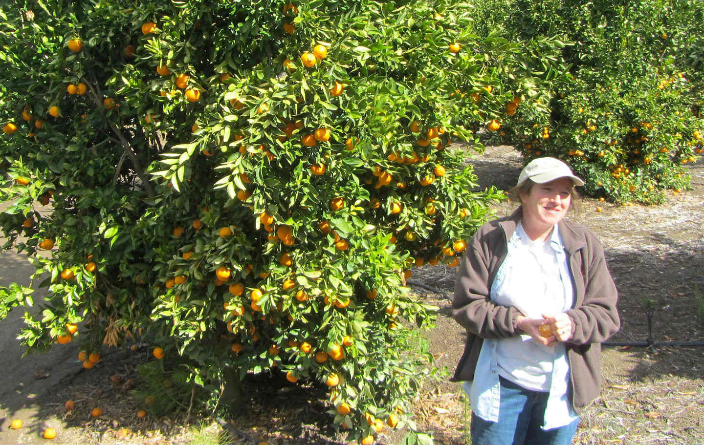 Emily Thacher Ayala shows off a Pixie tangerine.