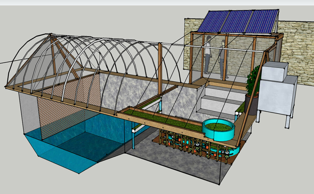 Swimming pool farms going off the deep end in arizona for Inground pool greenhouse