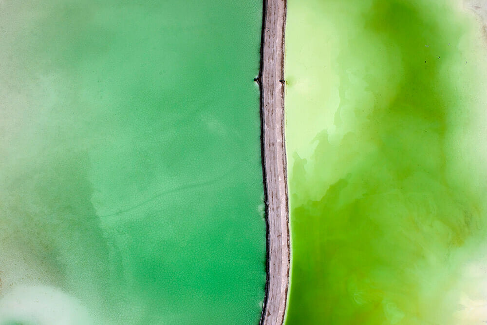 The green with the road: Toxic Beauty #14