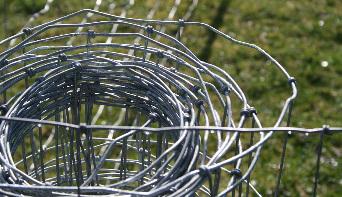 4 Hog Wire