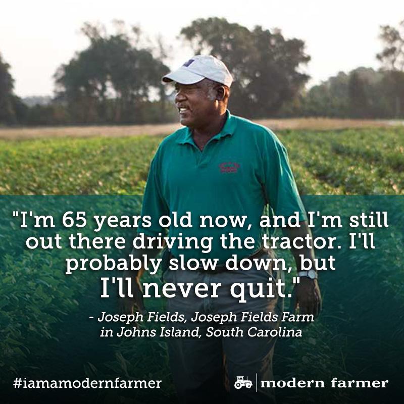 fields-mtmf-quote