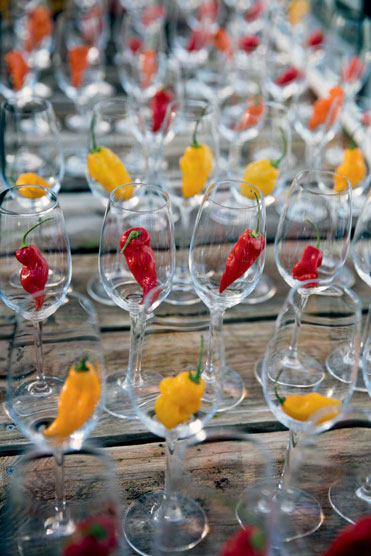 http://modernfarmer.com/wp-content/uploads/2015/12/seed-matters-chile-peppers1.jpg