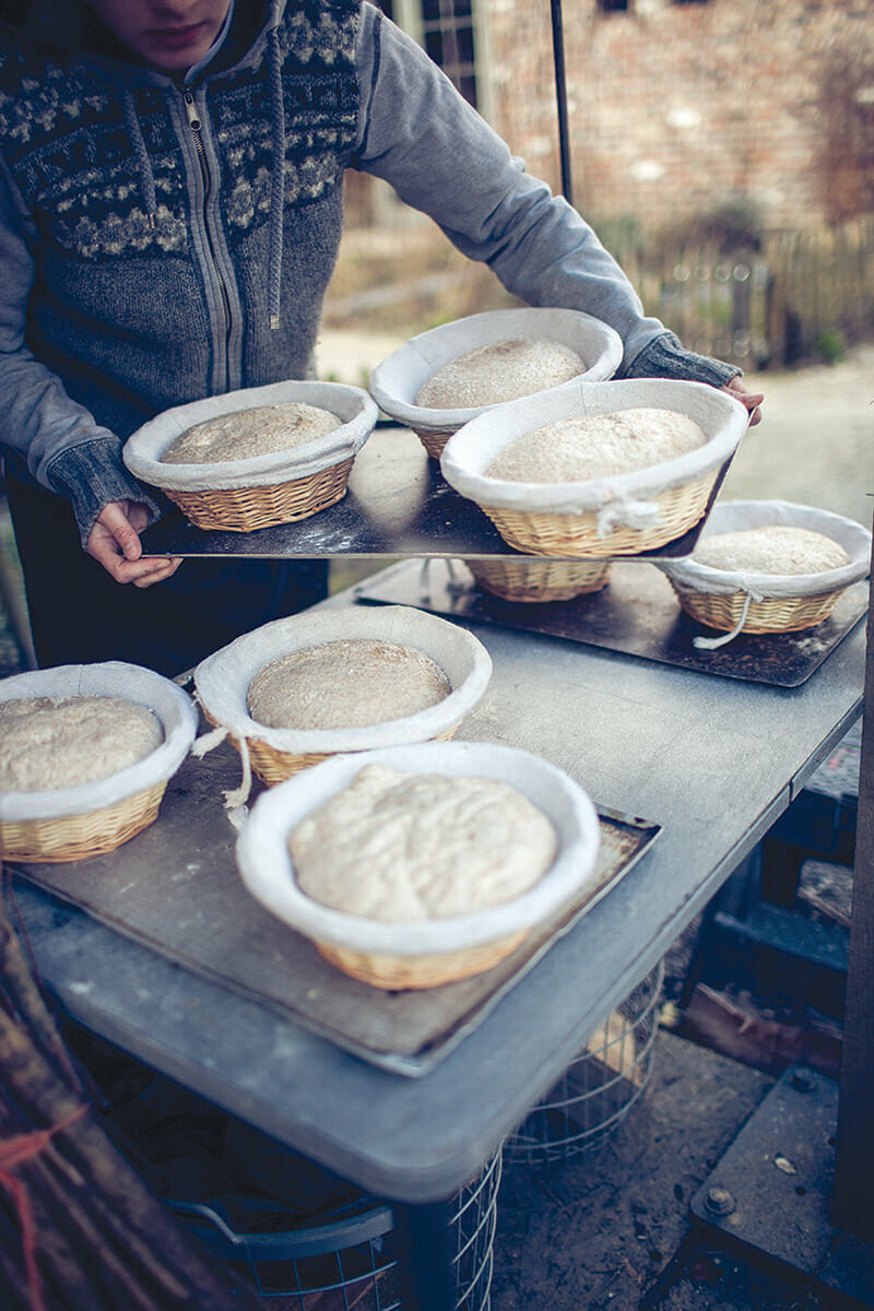 Bread dough, set out to rise.