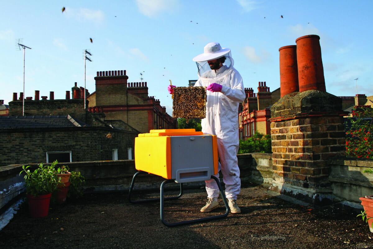 Beehaus_yellow_rooftop_hi_res