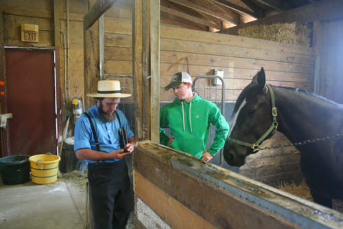 Brenneman talks shop in the shower stalls, where the horses get cleaned up after the races.