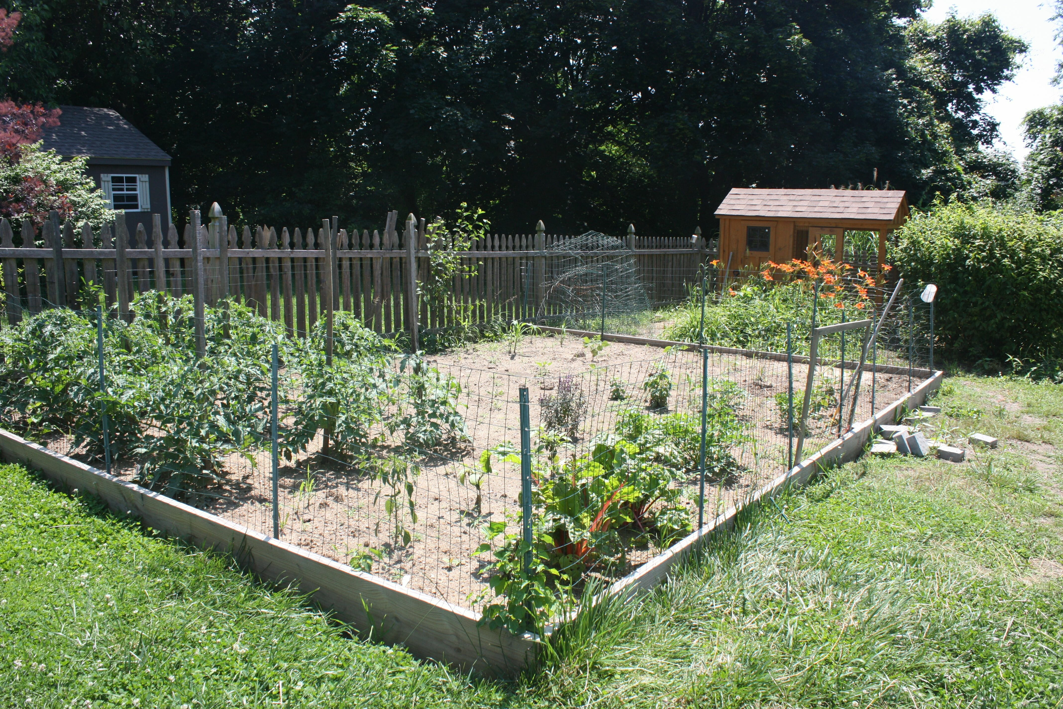 Even So Linette Keeps Her Vegetable Garden Fenced Off With En Wire During The Growing Season
