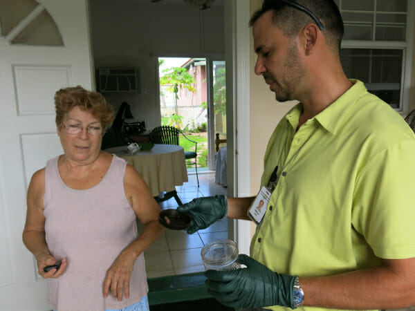 Garcia inspects a misidentified African Land Snail with the woman who found it.