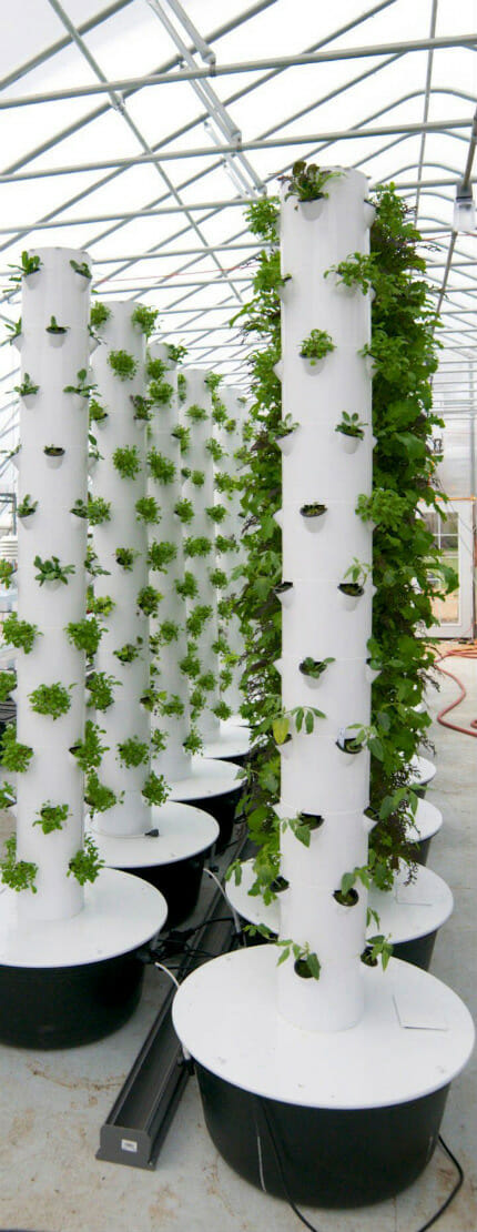 Vertical farm design