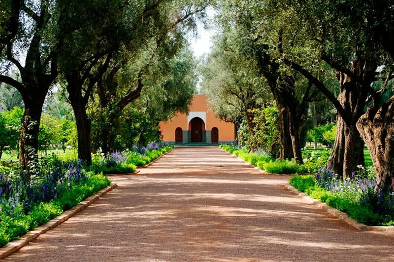 La-Mamounia-gardens-1-web
