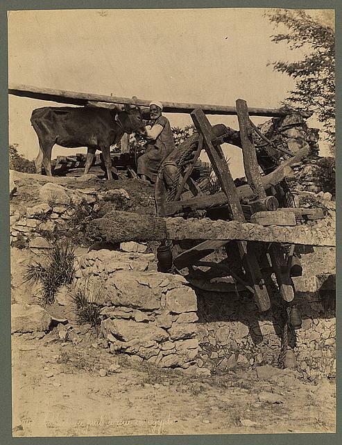 puits a roue en Egypte