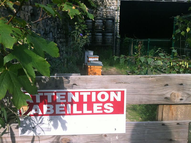 Attention-Abeilles