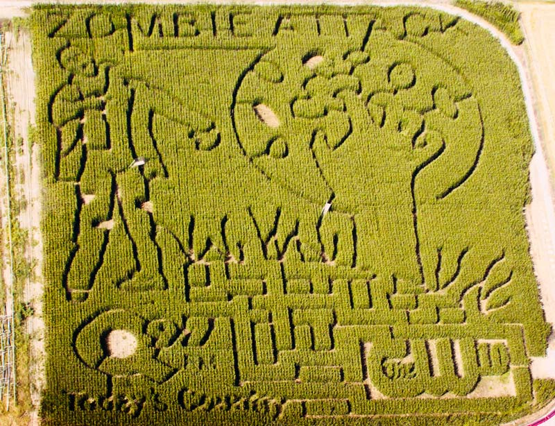 In 2012, Historic Hawes Farm in Anderson, CA, a customer of Herbt's, had a zombie-themed maze. / Historic Hawes Farm