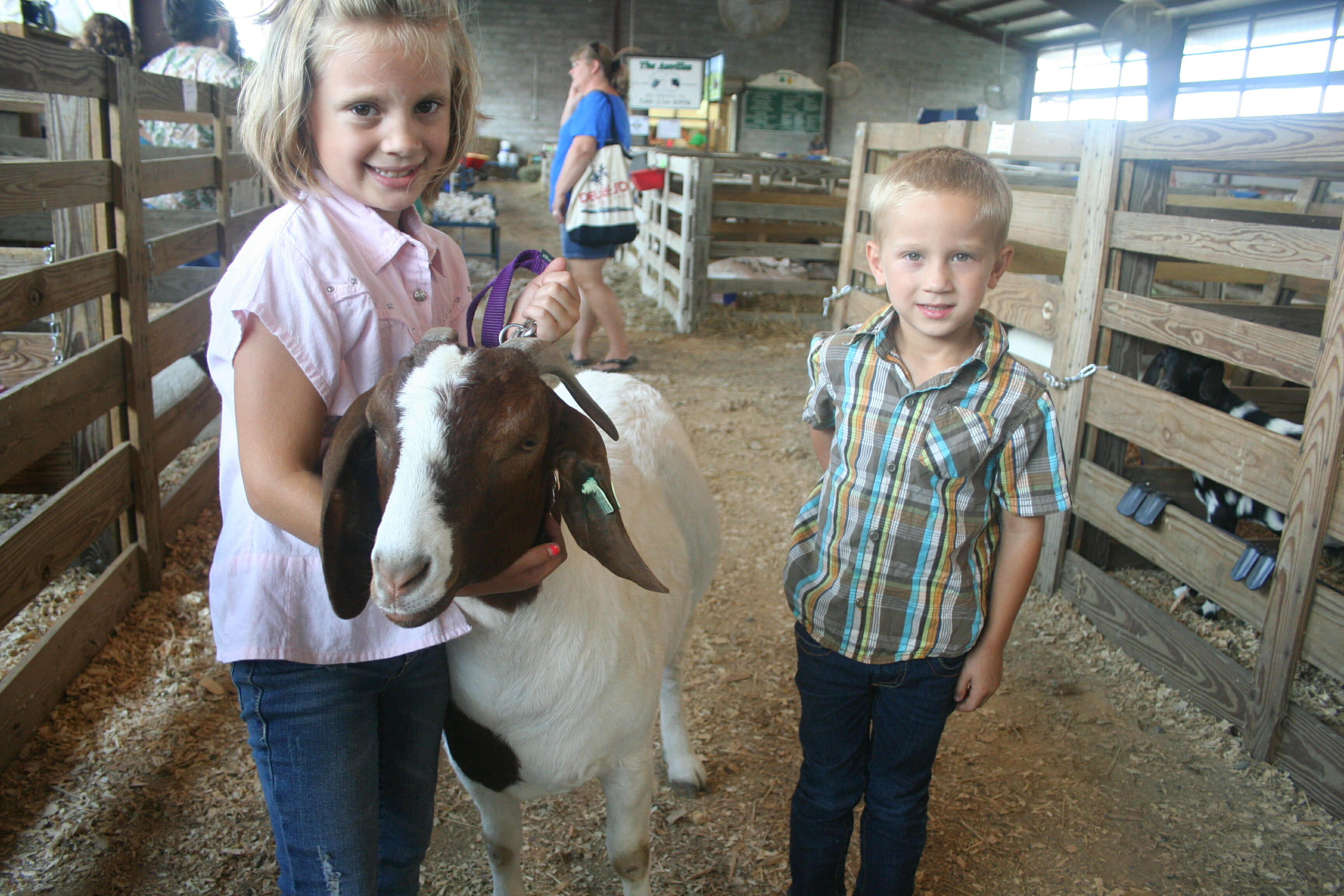 Alexis, 8, and Dillon, 4, Showalter pose with Deer Girl in the sheep and goat barn at the Rockingham County Fairgrounds. Jim Tom, Deer Girl's fair week nemesis, is visible on the right.