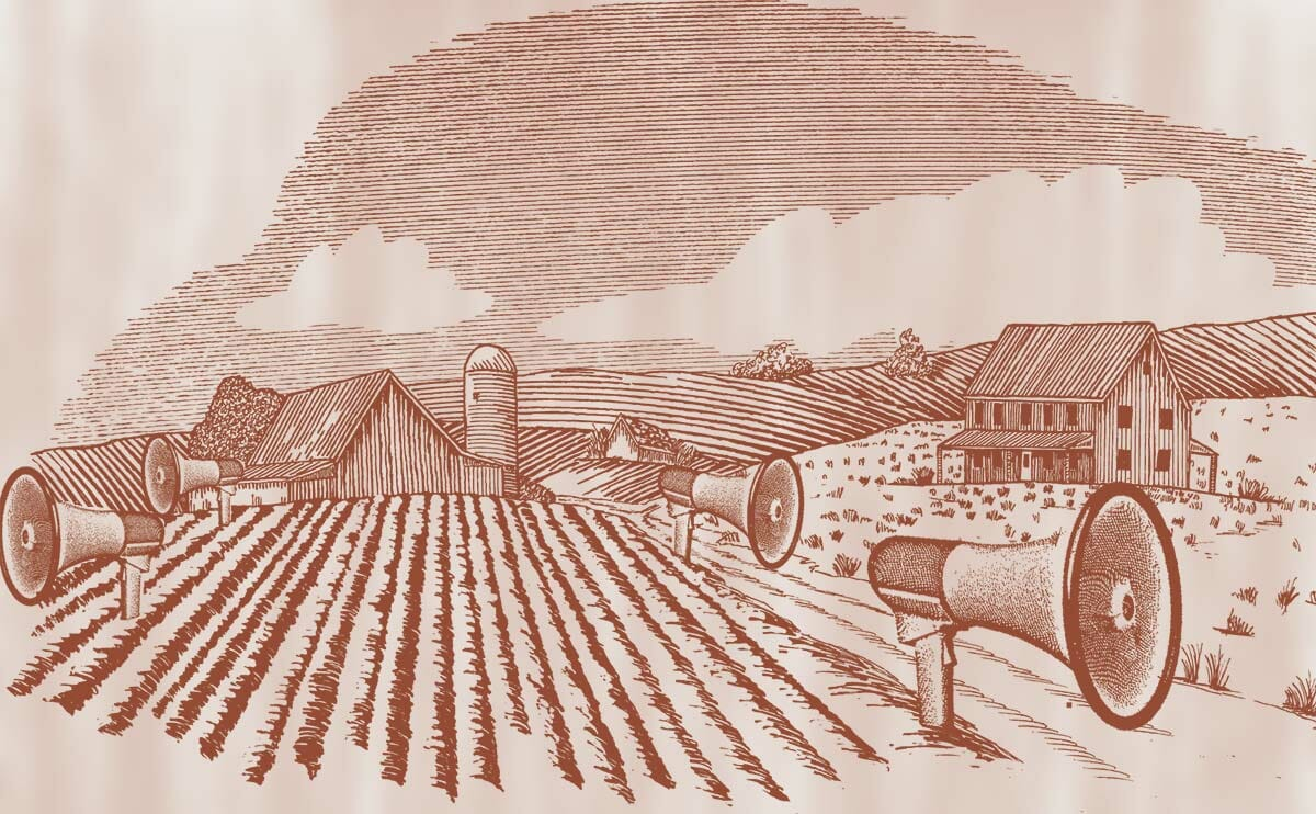 Using Sound to Keep Crops Safe - Modern Farmer