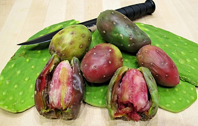 Nopales and cactus pears with spines removed. Image via Flickr.