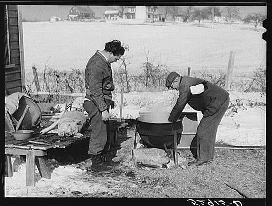 Hog killing near Frederick, Maryland. Photographer: Marion Post Wolcott, ca. February 1940.