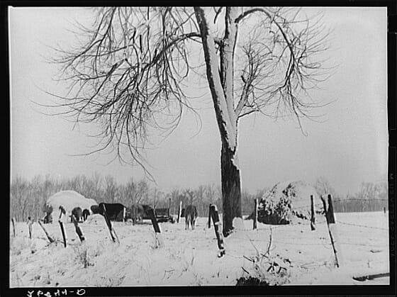 winter-farm-scene