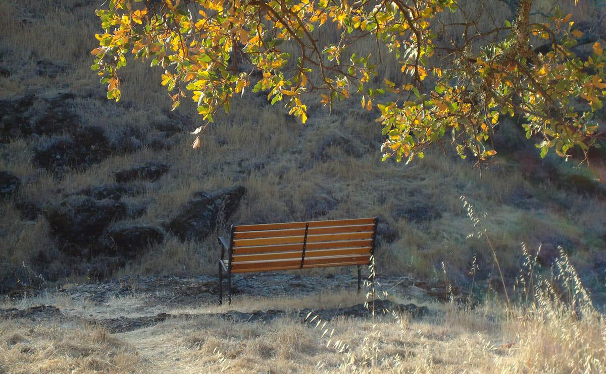 A meditation bench at Sky Farm. / Courtesy Sky Farm