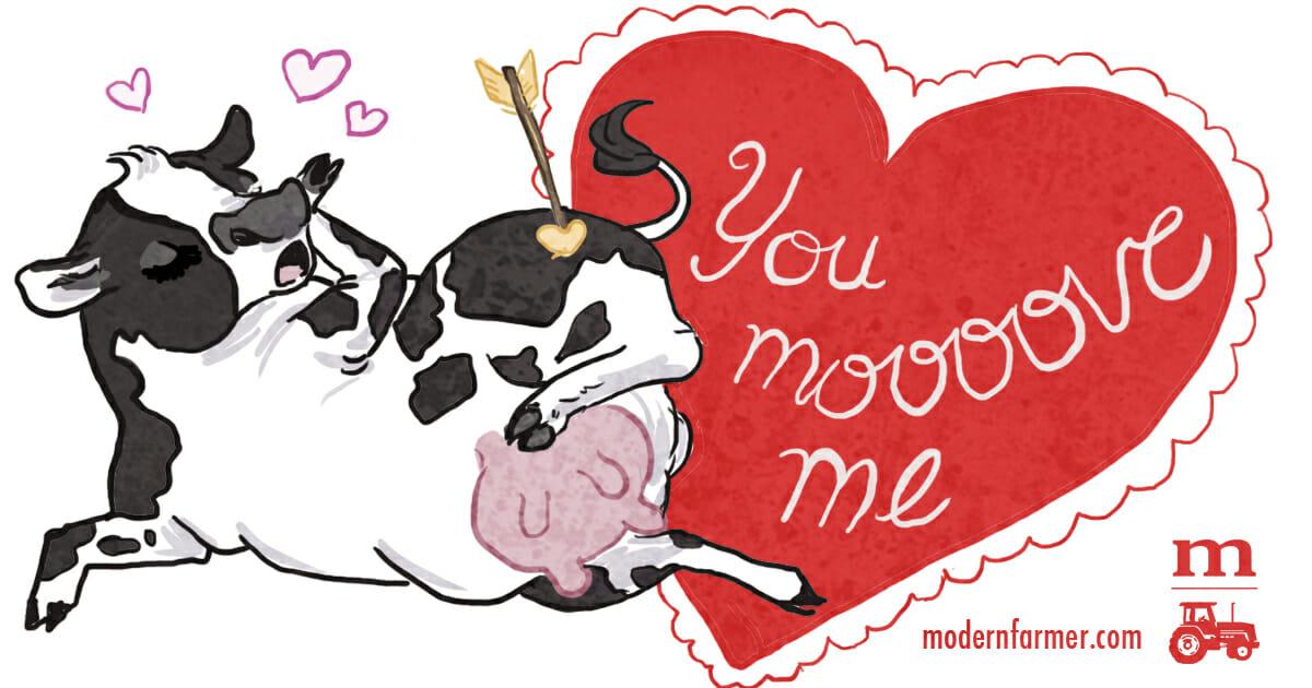 You Moooove Me