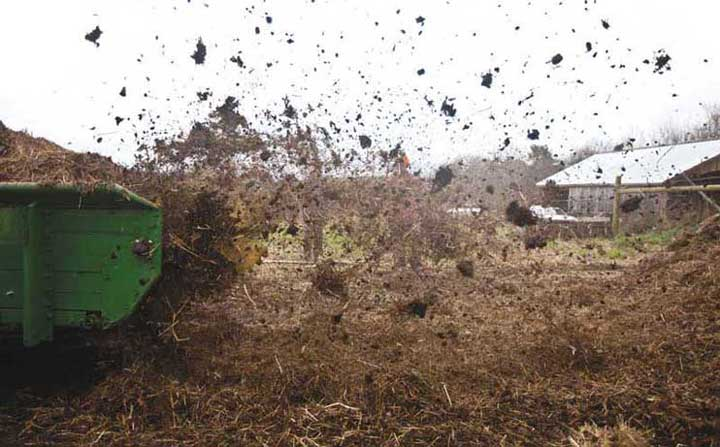 A pile of sheep manure and straw bedding is turned and spread into windrows with the aid of a compost spreader. Another technique for a large pile is hot composting, which requires frequent turning but reduces the required time to 18 days.