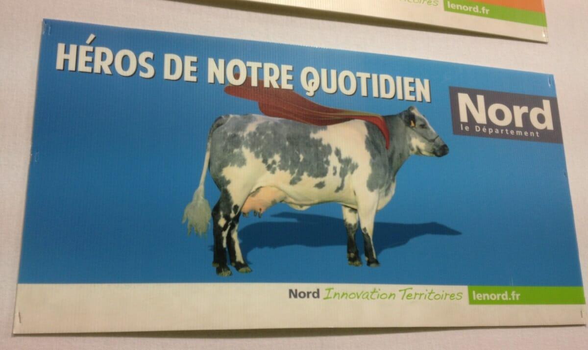 cows-heros
