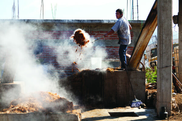 After the agave plants have been harvested, the remains are ground into a fibrous pulp called bagazo that will be heated and used in the mezcal-making process. A worker removes hot bagazo from a furnace.