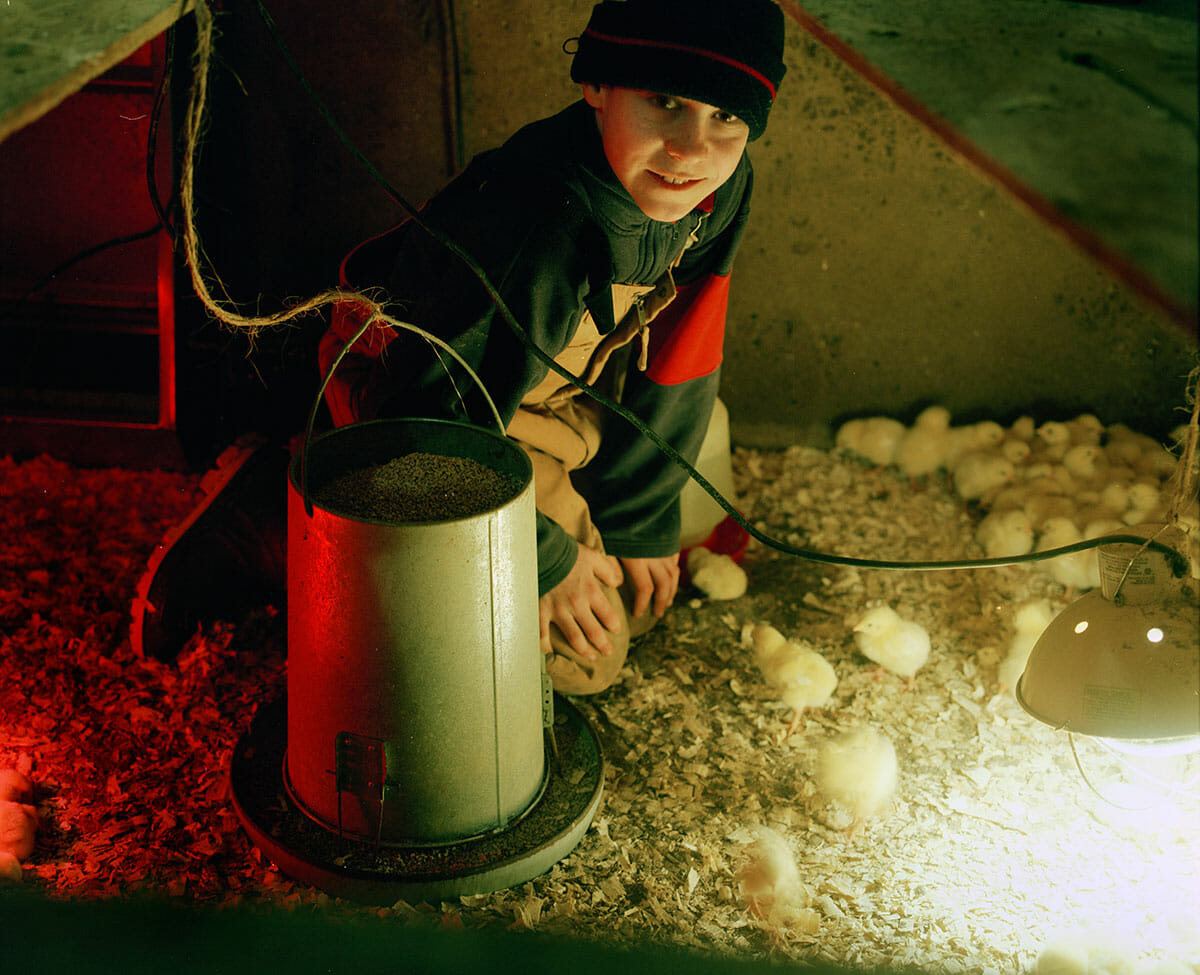 Young Farmers: Mathias Drake, 2009. Millview, PE. Materials: Photograph.