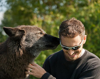 Author David H. Grimm and gets up close and personal with a wolf. Photo credit: Monty Sloan/Wolf Park