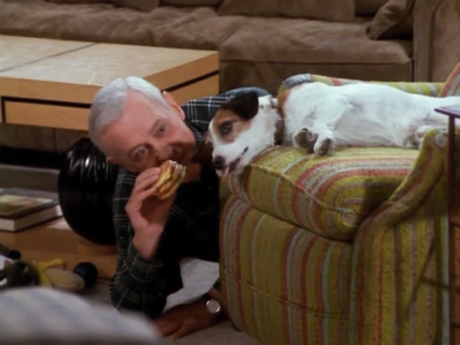Eddie, played by the Jack Russell, Moose, is one of the many terriers to make it in Hollywood in recent times.