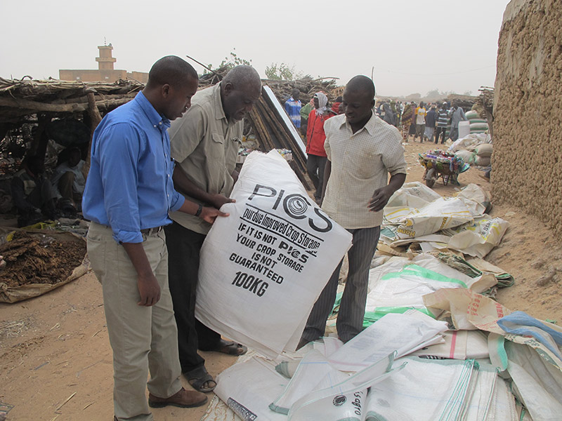 Project Directer Dieudonné Baributsa examines PICS bags for sale at a market in Niger.