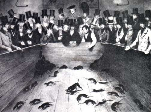 Ratting was such a prevalent form of early pest control that it was turned into a gambling event.