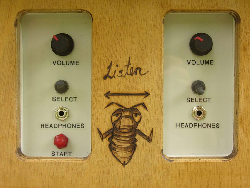 Plug in for some up-close and personal bee audio.