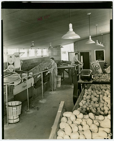 Mechanized food storage was one of more than 100 uses of electricity on display in the Electric Farm exhibit. / Courtesy NYPL Digital Archives.